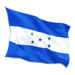 Buy Guinea Flags Online • Flag Shop