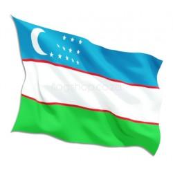 Uzbekistan Country Flag