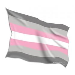 Buy Demigirl Pride Flags Online • Flag Shop