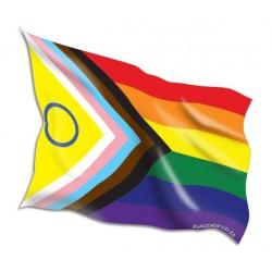 Buy latest Inclusive Pride Flags Online • Flag Shop