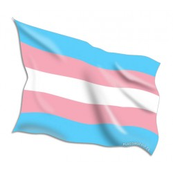 Mississippi State Flags