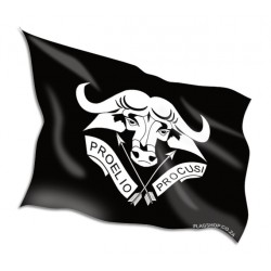 Nebraska State Flags