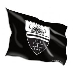 Vierkleur Flag